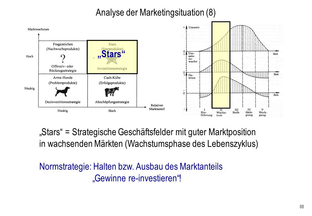 Analyse der Marketingsituation (8)