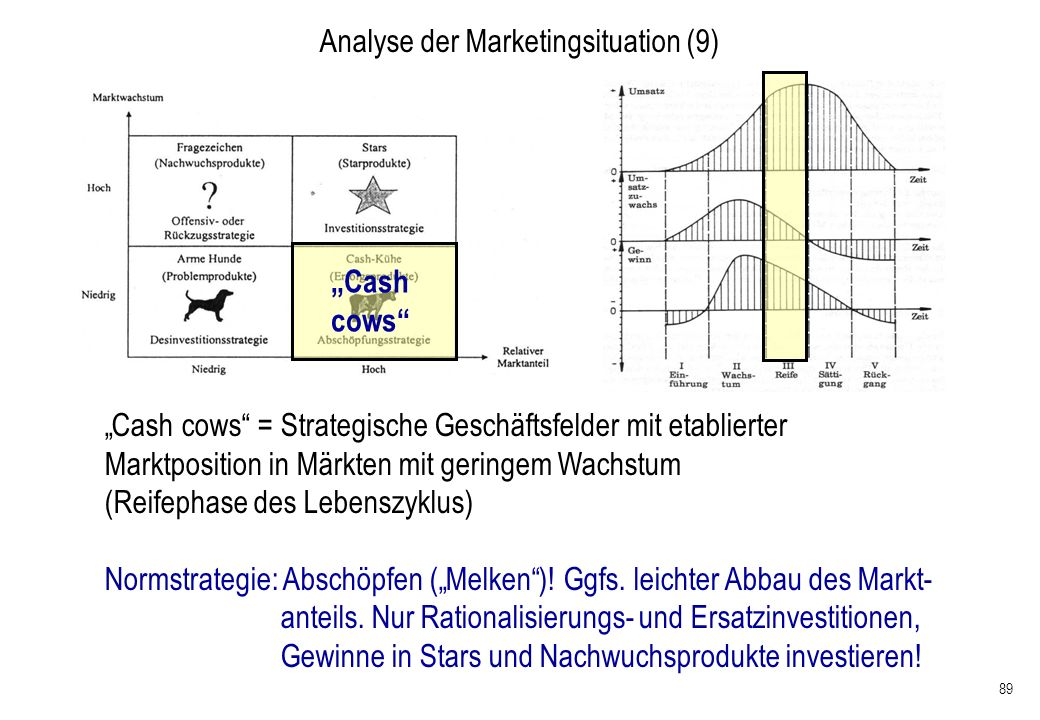 Analyse der Marketingsituation (9)