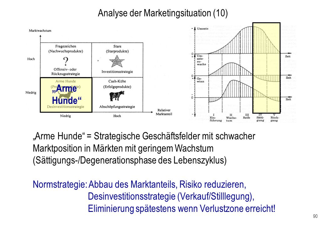 Analyse der Marketingsituation (10)