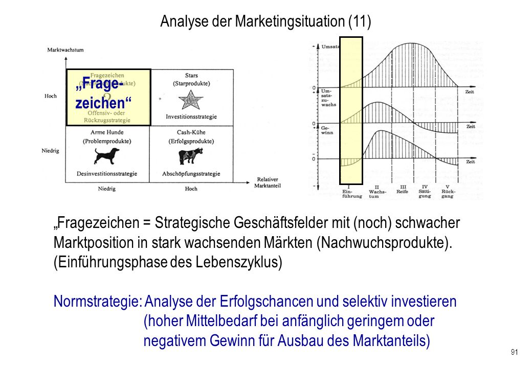 Analyse der Marketingsituation (11)