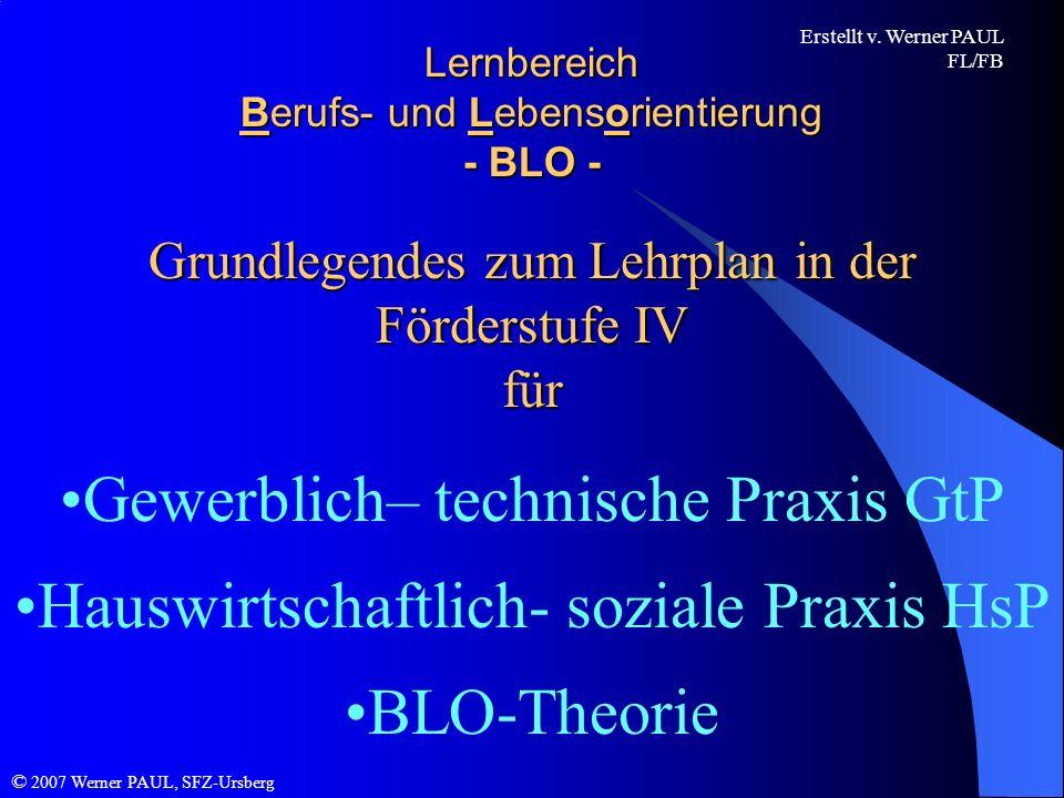 Lernbereich Berufs- und Lebensorientierung - BLO -
