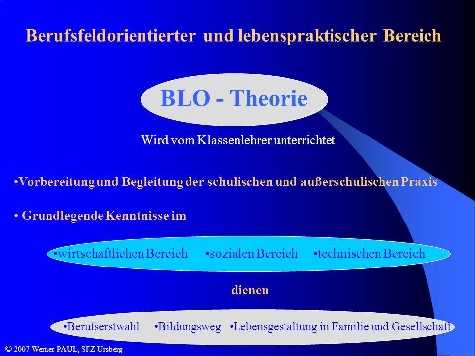 BLO - Theorie Berufsfeldorientierter und lebenspraktischer Bereich