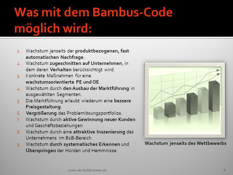 Was mit dem Bambus-Code möglich wird: