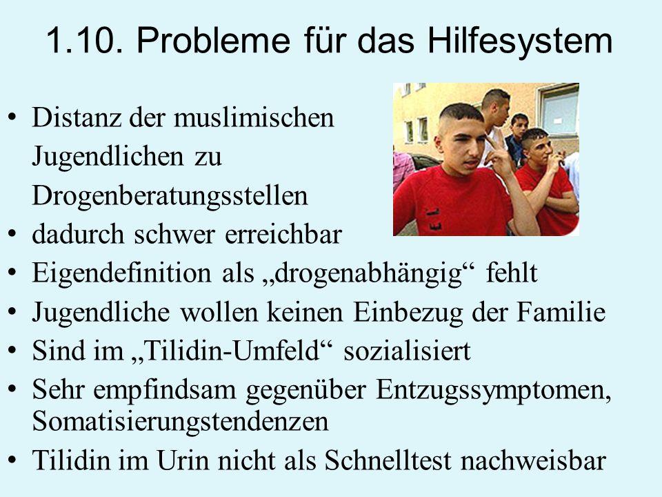1.10. Probleme für das Hilfesystem
