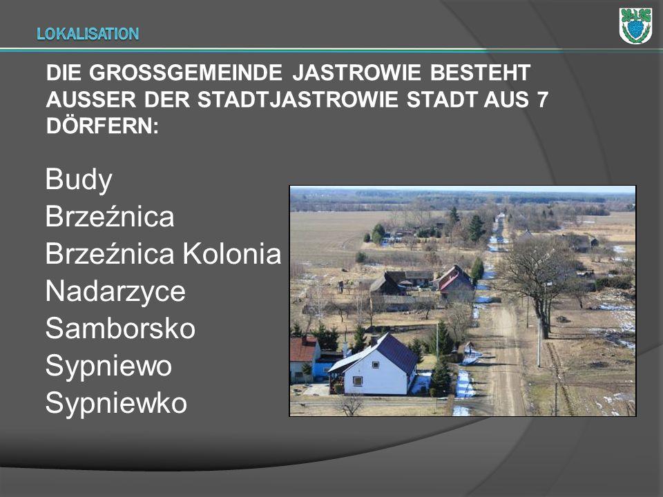 Budy Brzeźnica Brzeźnica Kolonia Nadarzyce Samborsko Sypniewo