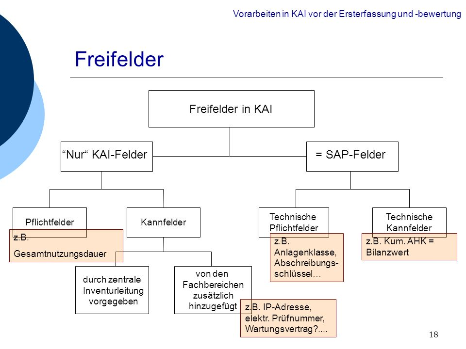 Freifelder Freifelder in KAI = SAP-Felder Nur KAI-Felder