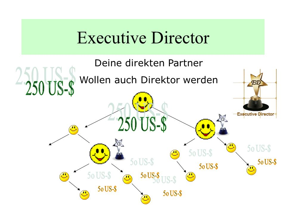 Executive Director 250 US-$ 250 US-$ Deine direkten Partner