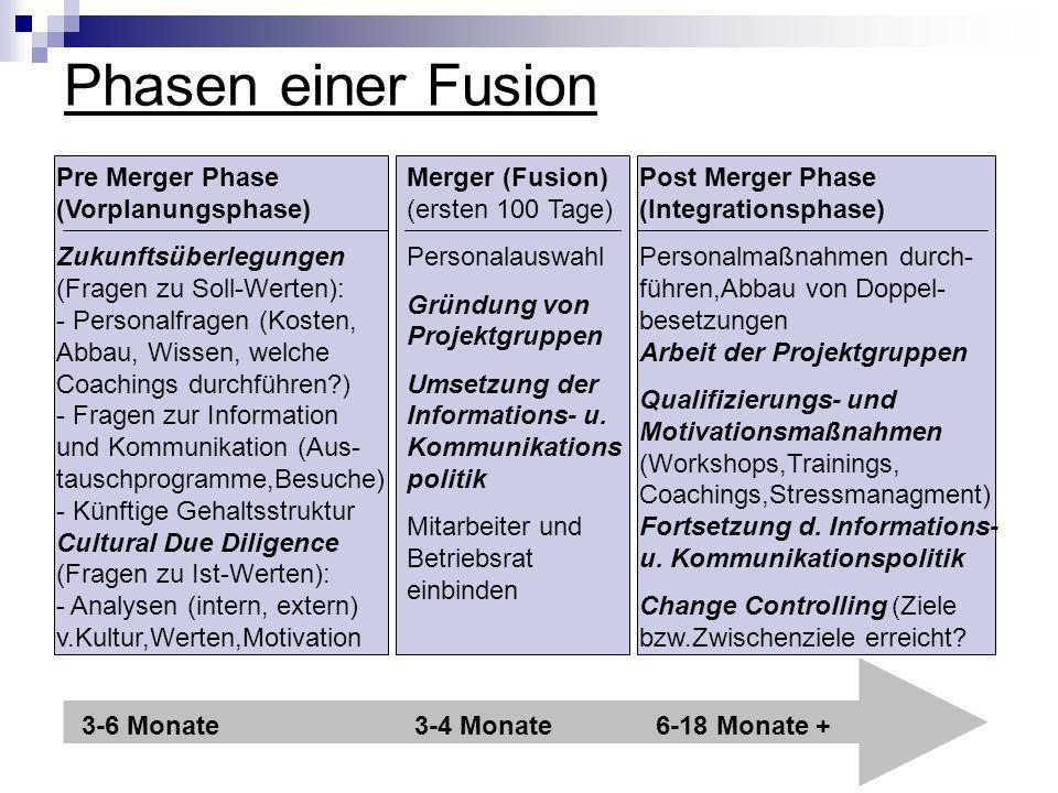Phasen einer Fusion Pre Merger Phase (Vorplanungsphase)
