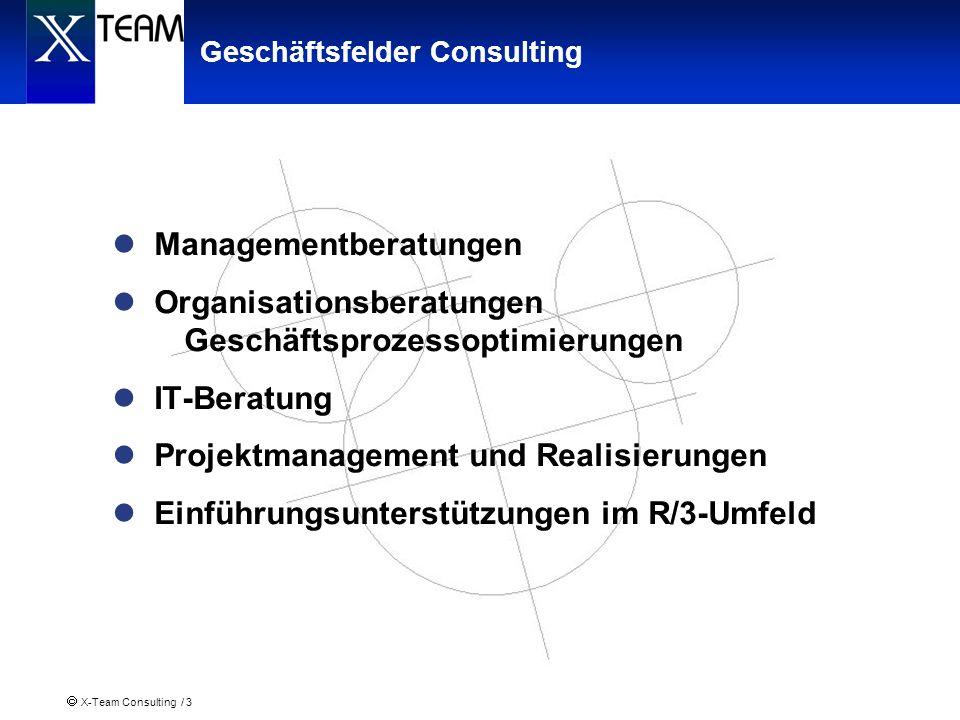 Geschäftsfelder Consulting