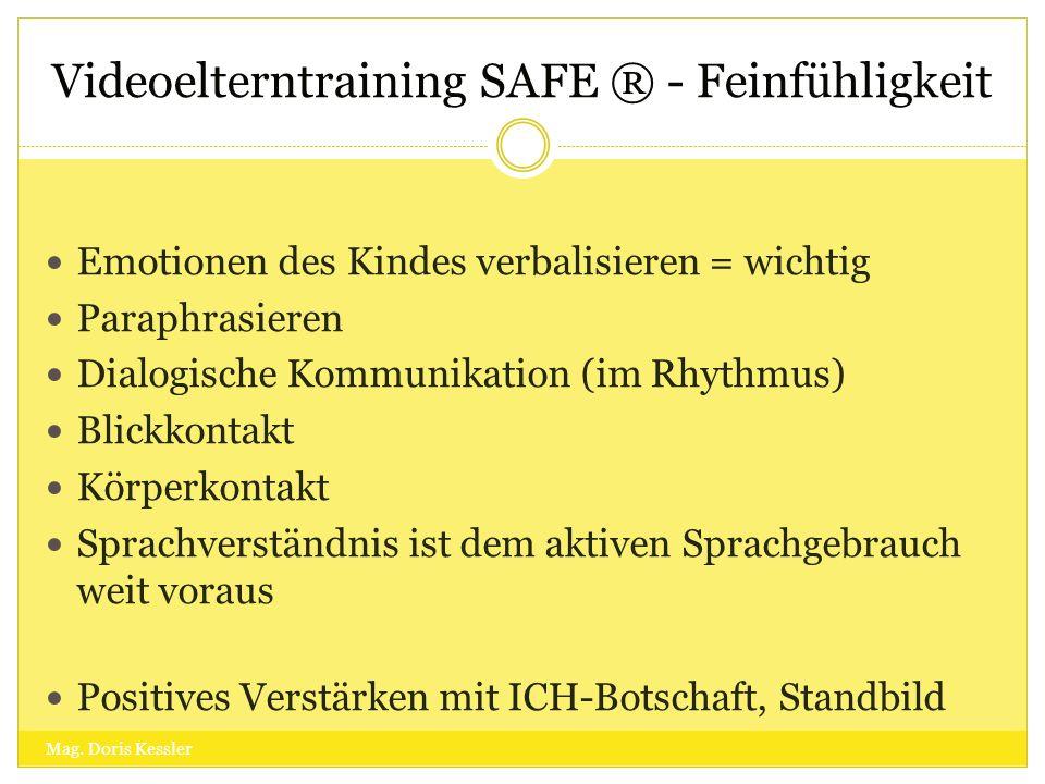 Videoelterntraining SAFE ® - Feinfühligkeit