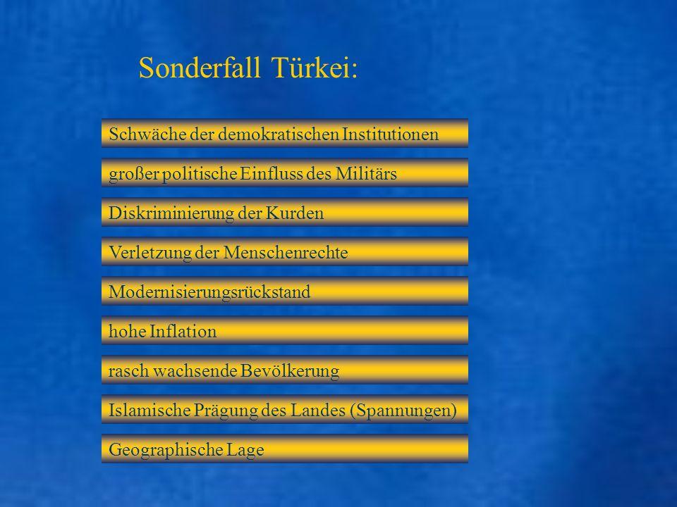Sonderfall Türkei: Schwäche der demokratischen Institutionen