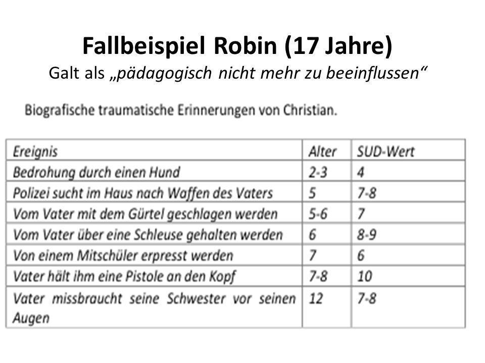 Fallbeispiel Robin (17 Jahre)