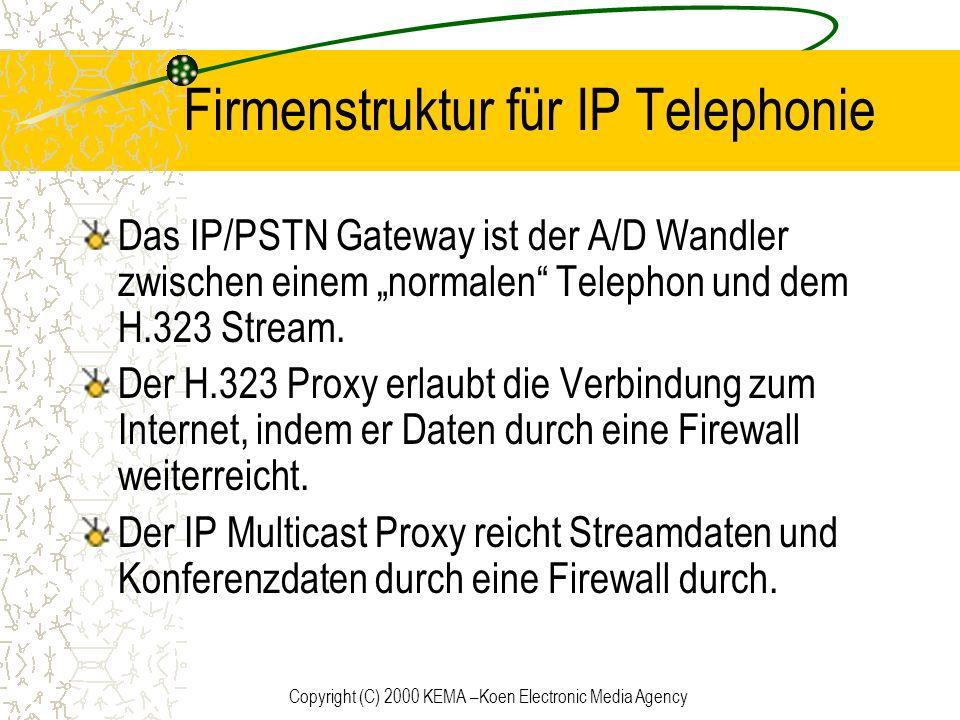 Firmenstruktur für IP Telephonie