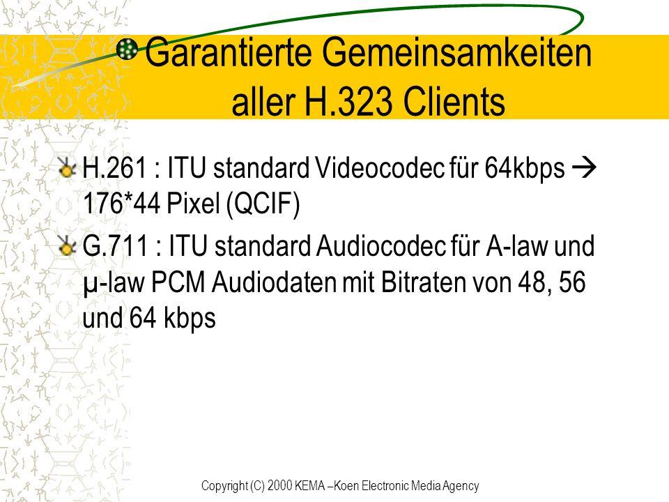 Garantierte Gemeinsamkeiten aller H.323 Clients