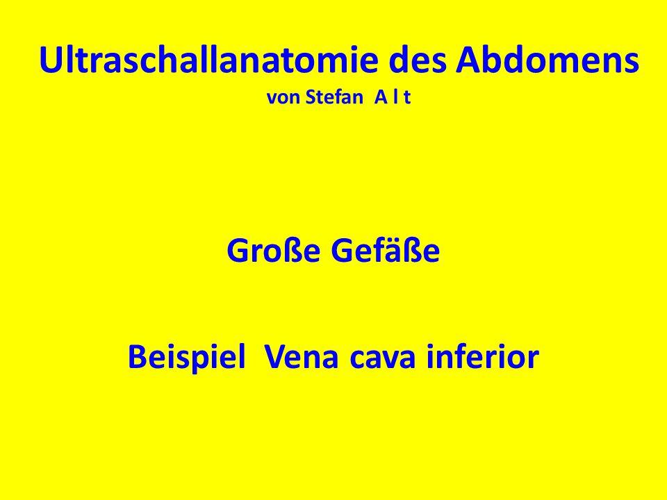 Ultraschallanatomie des Abdomens von Stefan A l t
