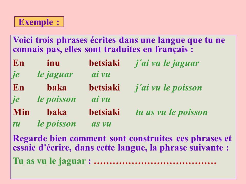 Exemple : Voici trois phrases écrites dans une langue que tu ne connais pas, elles sont traduites en français :