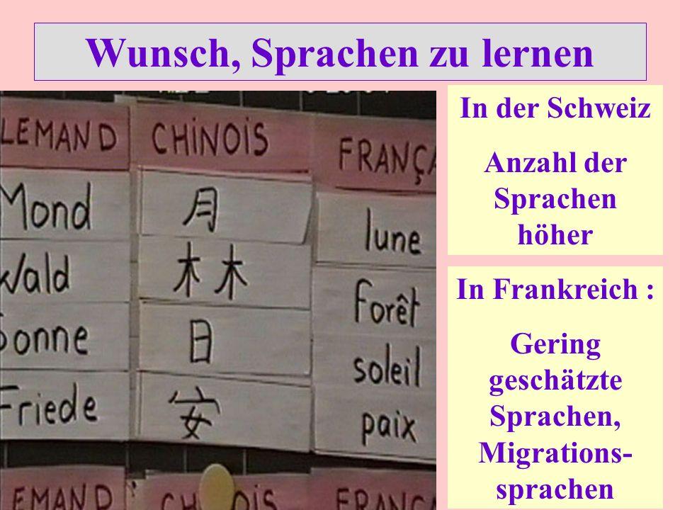 Wunsch, Sprachen zu lernen