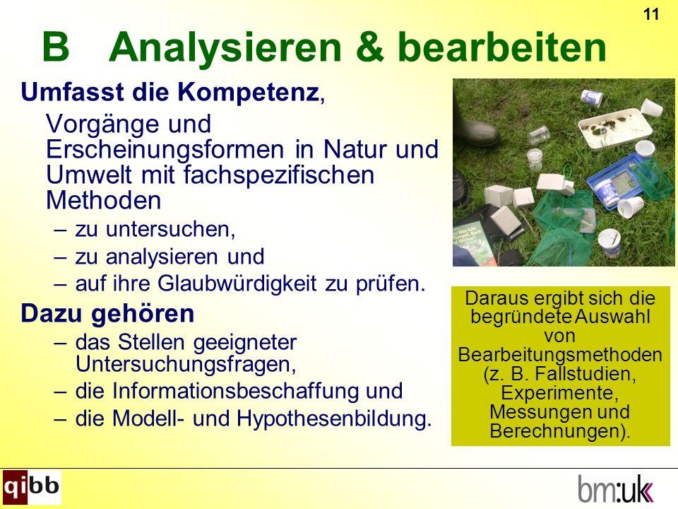 B Analysieren & bearbeiten