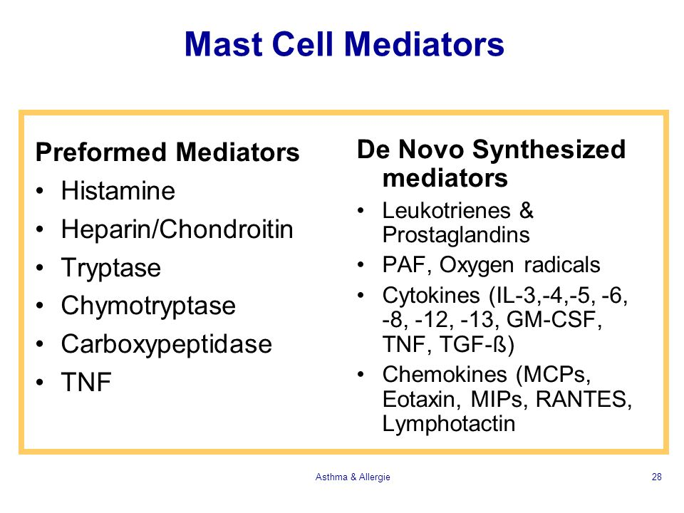 Mast Cell Mediators Preformed Mediators Histamine Heparin/Chondroitin