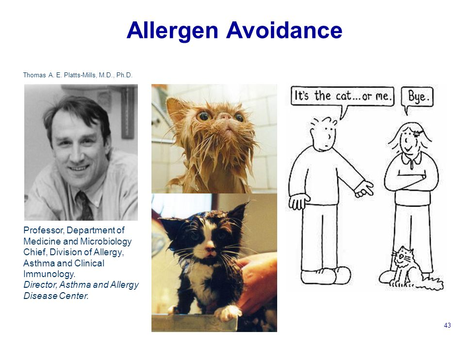 Allergen Avoidance Professor, Department of Medicine and Microbiology