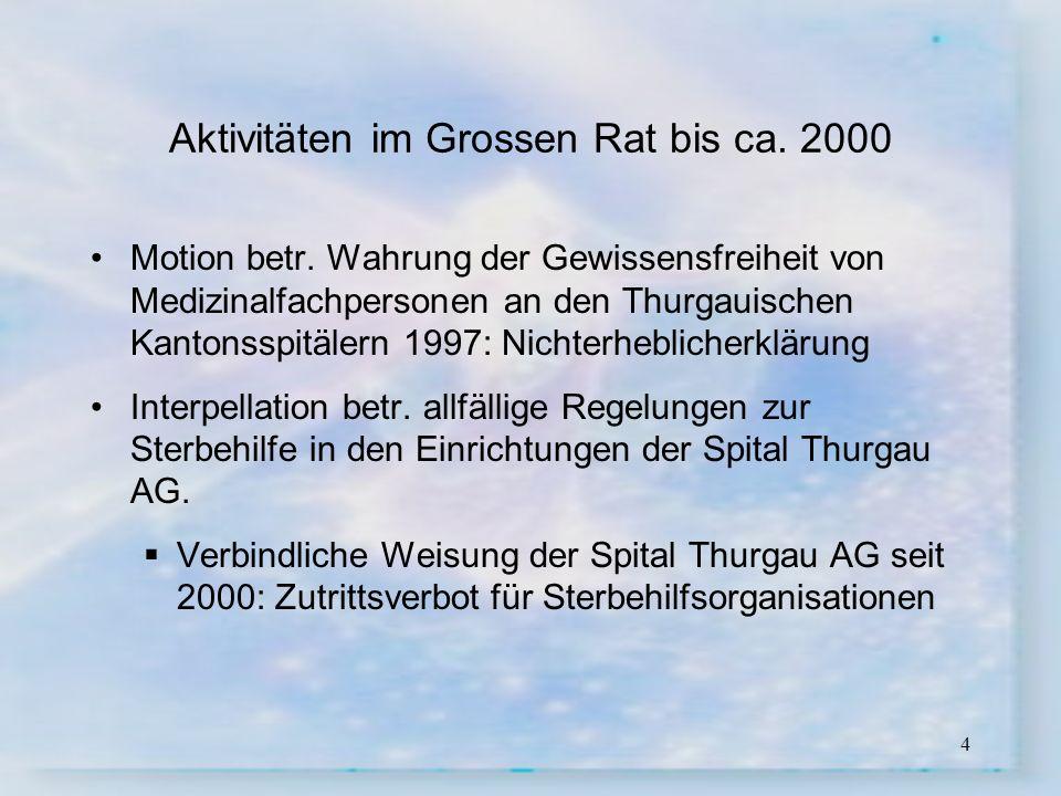 Aktivitäten im Grossen Rat bis ca. 2000