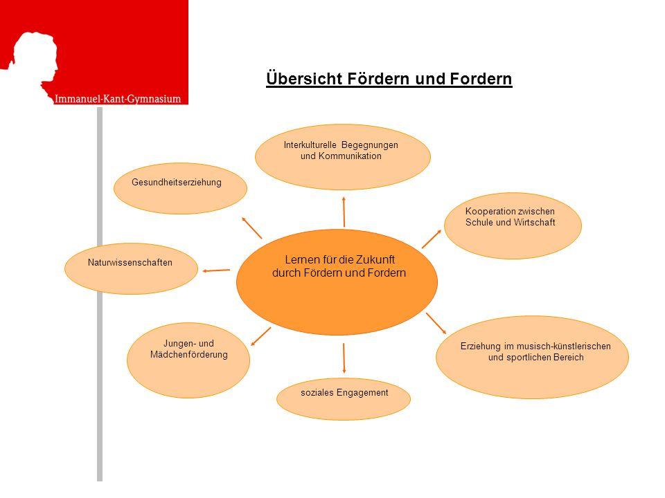 Übersicht Fördern und Fordern