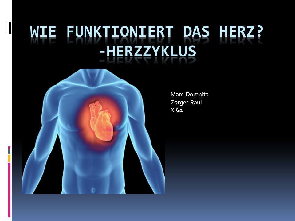 Wie funktioniert das Herz -Herzzyklus