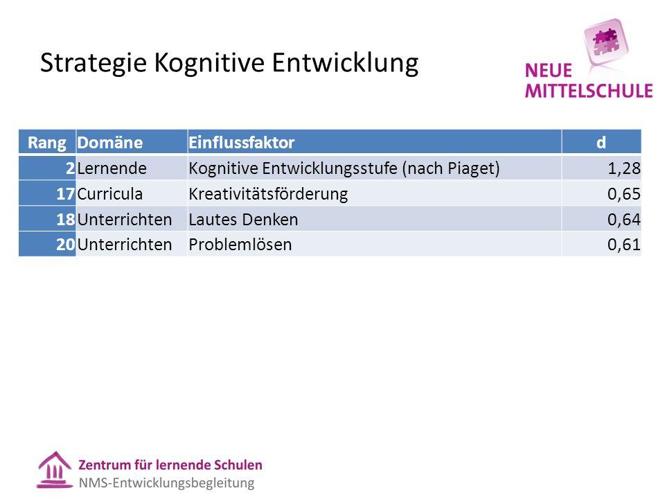 Strategie Kognitive Entwicklung