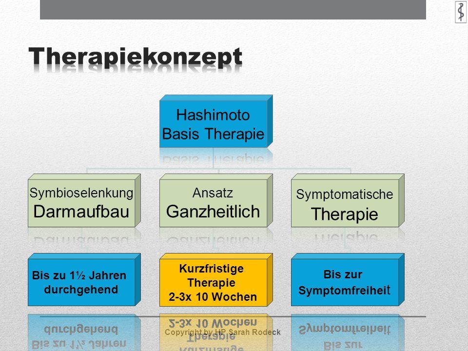 Therapiekonzept Ganzheitlich Hashimoto Basis Therapie