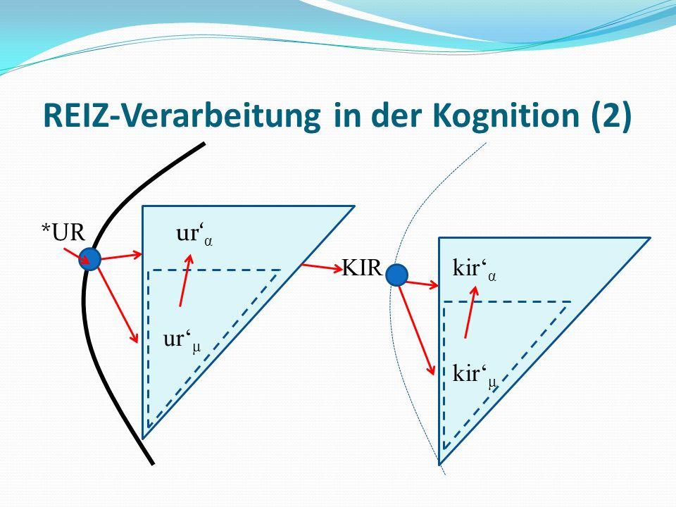 REIZ-Verarbeitung in der Kognition (2)