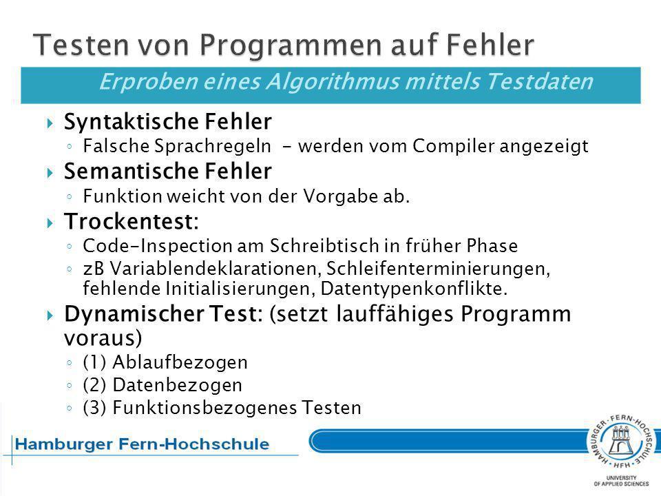 Testen von Programmen auf Fehler