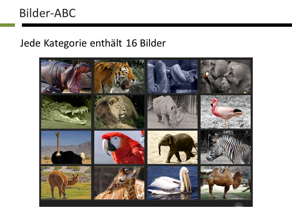 Jede Kategorie enthält 16 Bilder