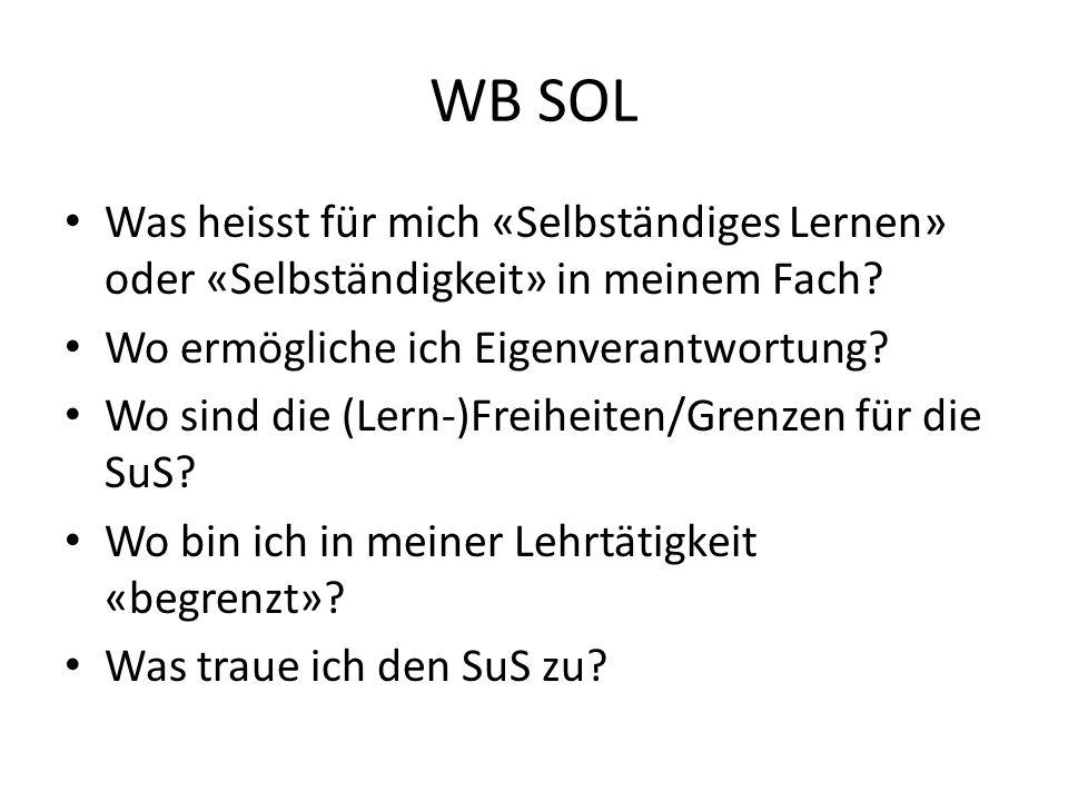 WB SOL Was heisst für mich «Selbständiges Lernen» oder «Selbständigkeit» in meinem Fach Wo ermögliche ich Eigenverantwortung