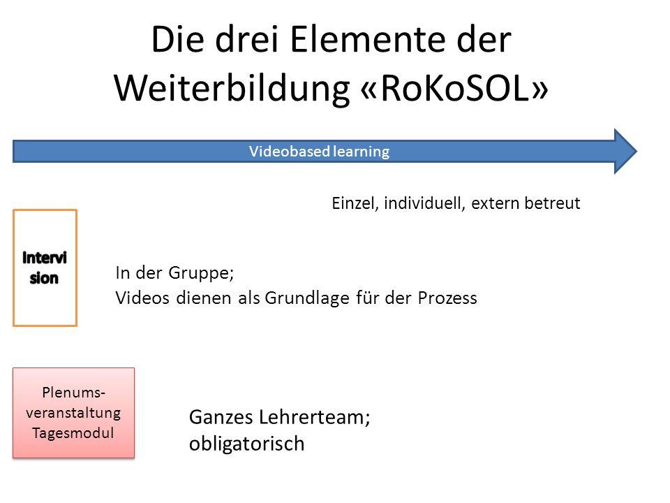 Die drei Elemente der Weiterbildung «RoKoSOL»