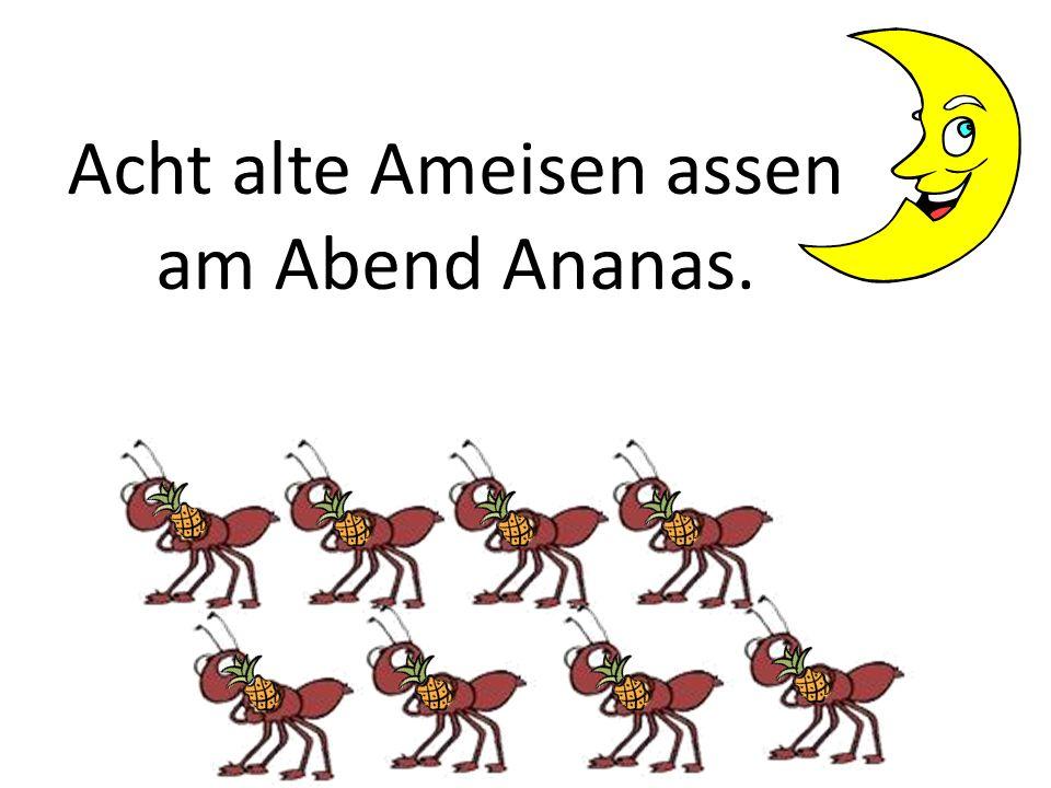 Acht alte Ameisen assen am Abend Ananas.