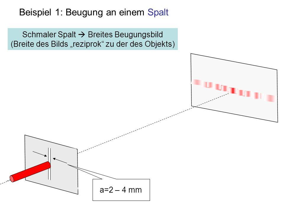Beispiel 1: Beugung an einem Spalt