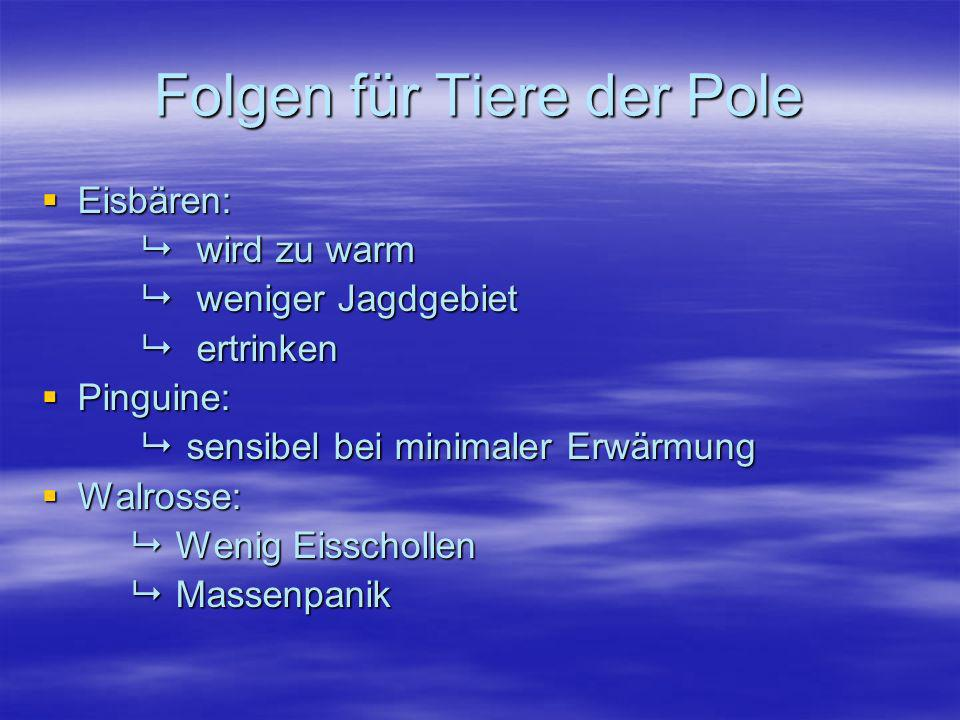 Folgen für Tiere der Pole