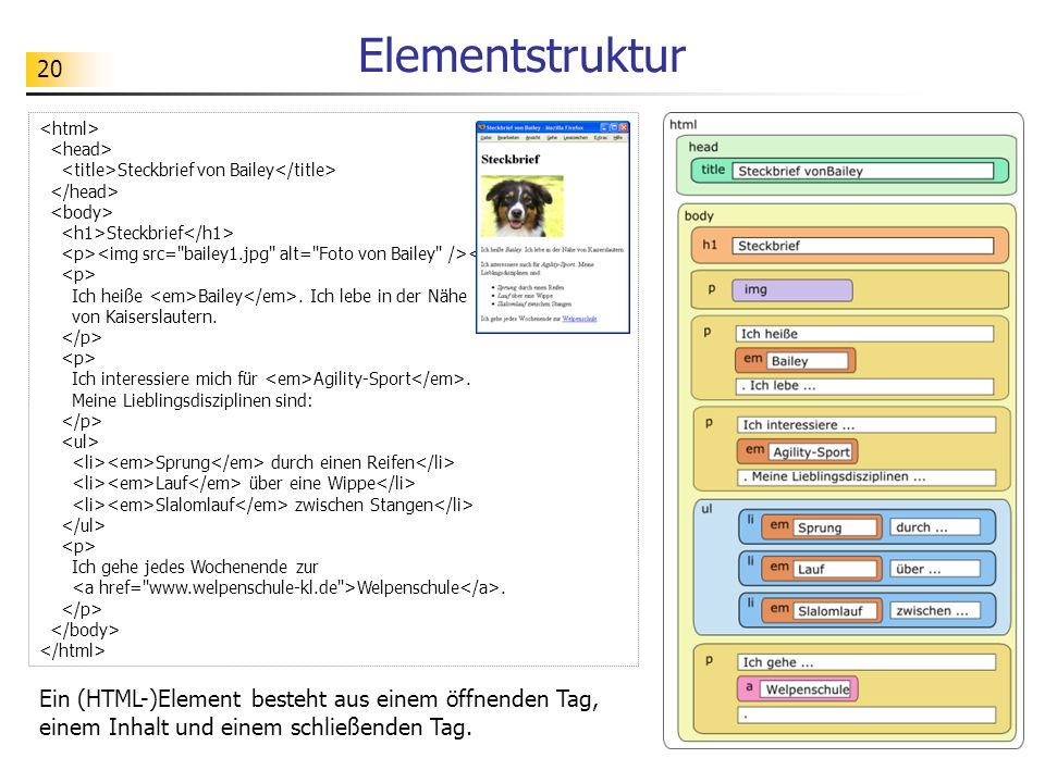Elementstruktur <html> <head> <title>Steckbrief von Bailey</title> </head> <body> <h1>Steckbrief</h1>