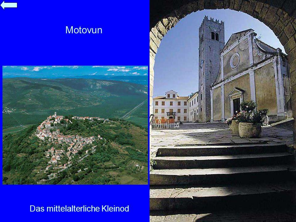 Das mittelalterliche Kleinod