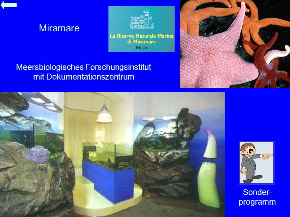 Meersbiologisches Forschungsinstitut mit Dokumentationszentrum
