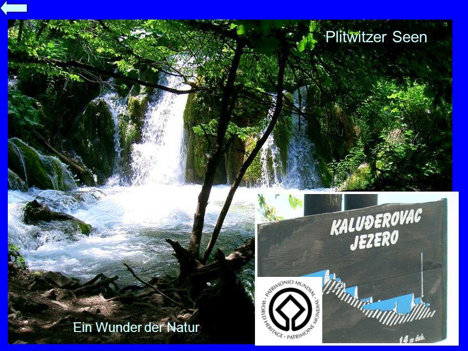 Plitwitzer Seen Ein Wunder der Natur