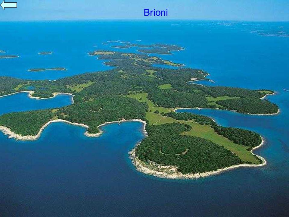 Brioni Brioni war die Sommerresidenz des früheren Staatspräsidenten Tito.