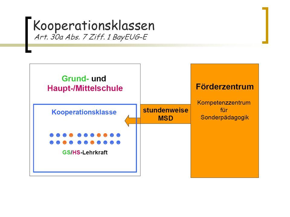 Kooperationsklassen Art. 30a Abs. 7 Ziff. 1 BayEUG-E