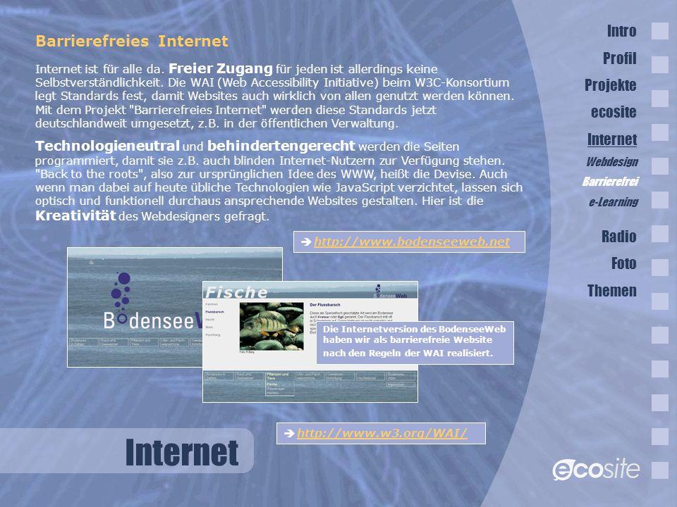 Internet Intro Barrierefreies Internet Profil Projekte ecosite