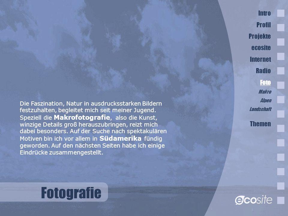 Fotografie Intro Profil Projekte ecosite Internet Radio Foto Themen
