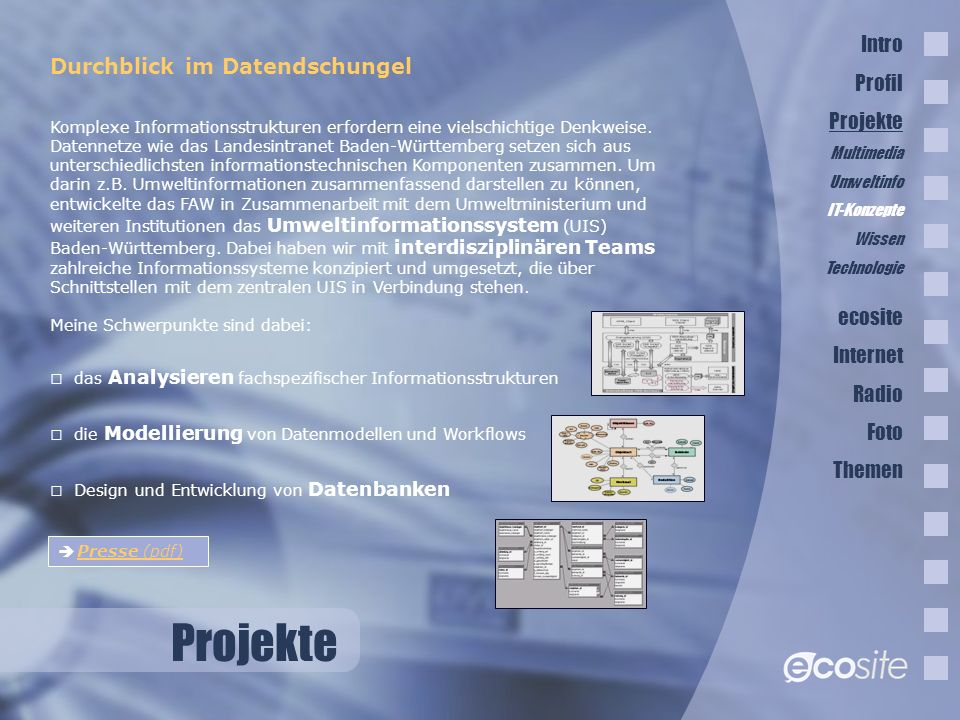 Projekte Intro Profil Durchblick im Datendschungel Projekte ecosite