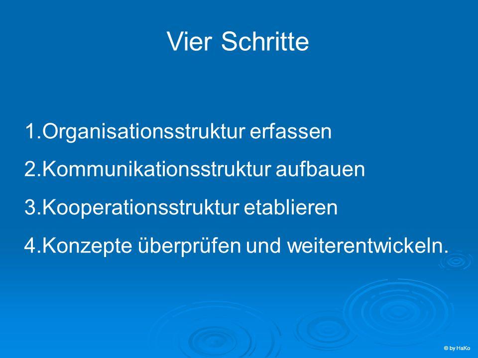 Vier Schritte Organisationsstruktur erfassen