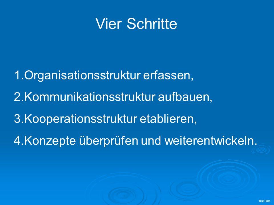 Vier Schritte Organisationsstruktur erfassen,