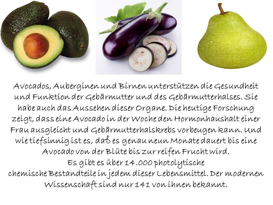 Groß Gebärmutter Funktion Bilder - Menschliche Anatomie Bilder ...