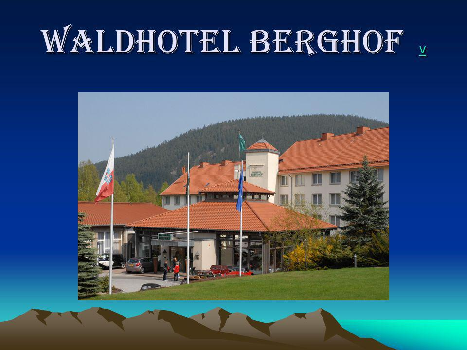 WALDHOTEL BERGHOF v